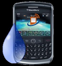 Blackberry-Curve-8900-Liquid-Damage-Repair-Service