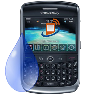 Blackberry-Curve-8900-Liquid-Damage-Repair-Service